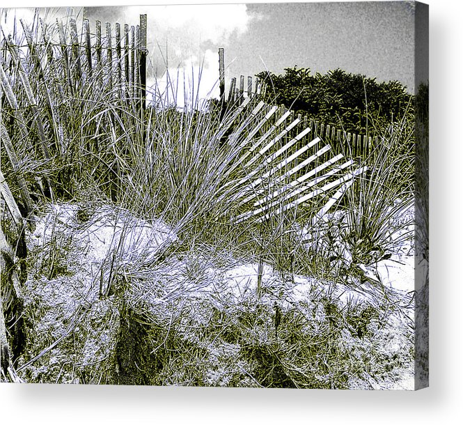 Fences Acrylic Print featuring the photograph Fences In Duotone by Anne Ferguson