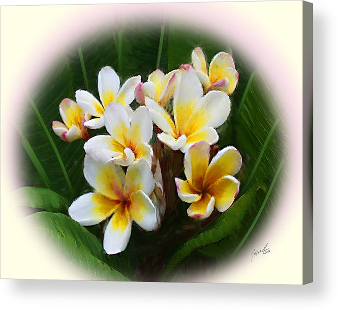 Frangipani Flowers Acrylic Print featuring the digital art Frangipani Flowers by Jeffrey Graves
