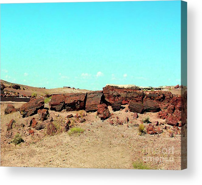 Arizona Acrylic Print featuring the photograph In The Petrified Forest In Arizona by Merton Allen