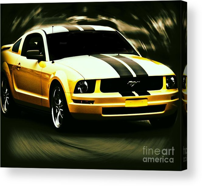 Mustang Acrylic Print featuring the photograph Mustang by Emily Kelley