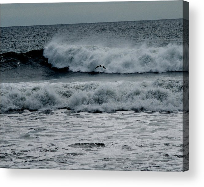 Surf Acrylic Print featuring the photograph Seagull And Surf by Barry Doherty
