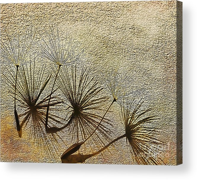 Nature Acrylic Print featuring the digital art Three Wishes by Artist and Photographer Laura Wrede