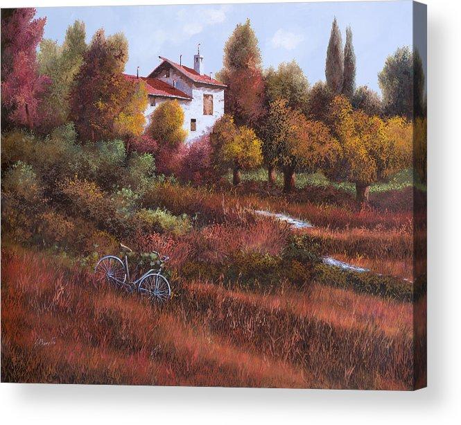 Bike.wood Acrylic Print featuring the painting Una Bicicletta Nel Bosco by Guido Borelli