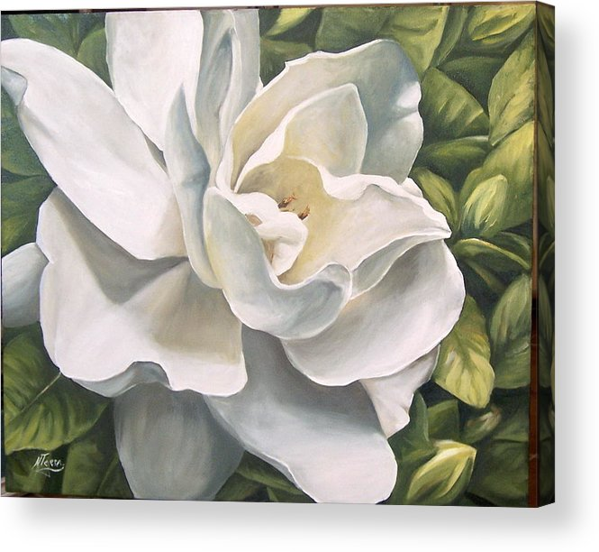 Flower Acrylic Print featuring the painting Gardenia by Natalia Tejera
