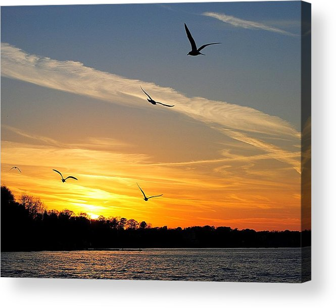 Lake Acrylic Print featuring the photograph November Sunset by Frozen in Time Fine Art Photography
