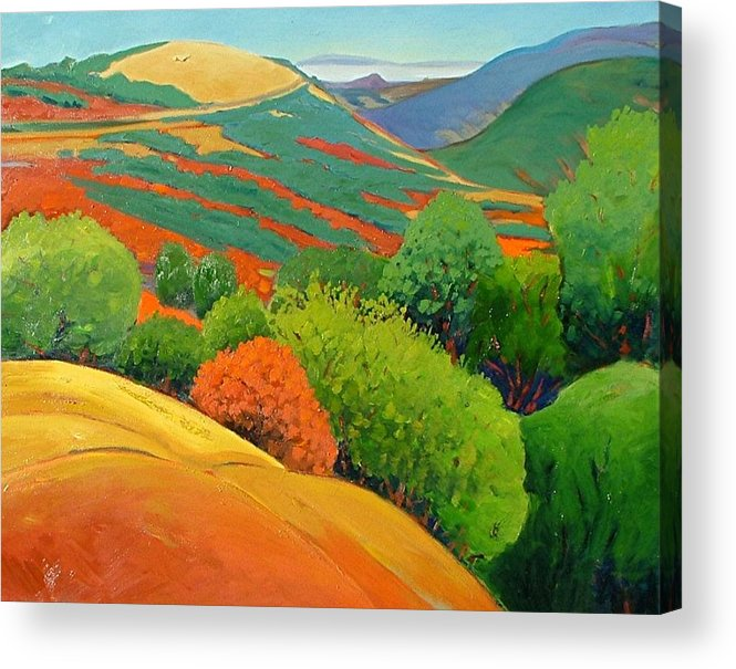 California Landscape Acrylic Print featuring the painting Bald Hill by Gary Coleman