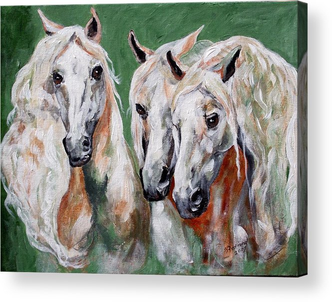 Andalusian Acrylic Print featuring the painting Cavalia by BJ Redmond