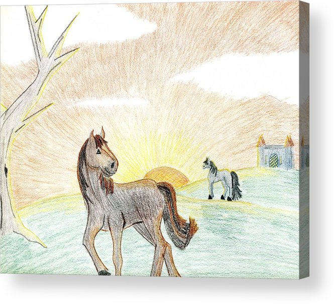 Horse Acrylic Print featuring the drawing Childhood Dream by Kim