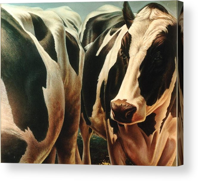 Cows Acrylic Print featuring the painting Cows 1 by Hans Droog