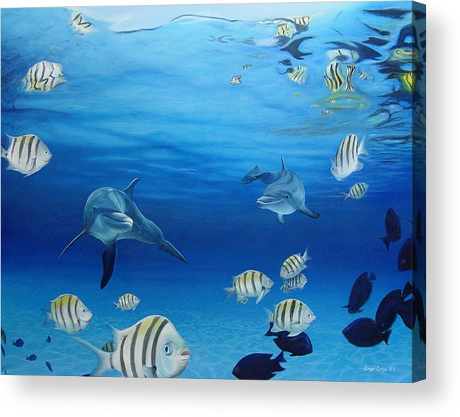 Seascape Acrylic Print featuring the painting Delphinus by Angel Ortiz