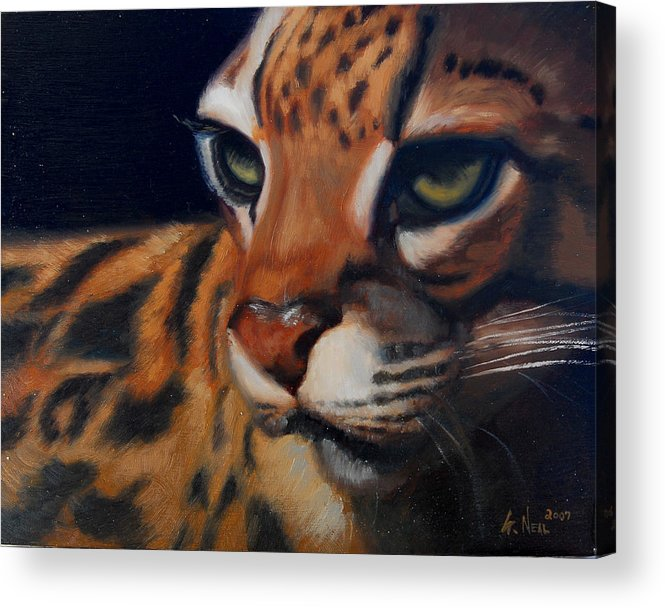 Painting Acrylic Print featuring the painting Eyes Wide Open by Greg Neal