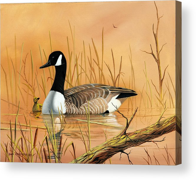 Duck Acrylic Print featuring the painting Father And Son by Don Griffiths