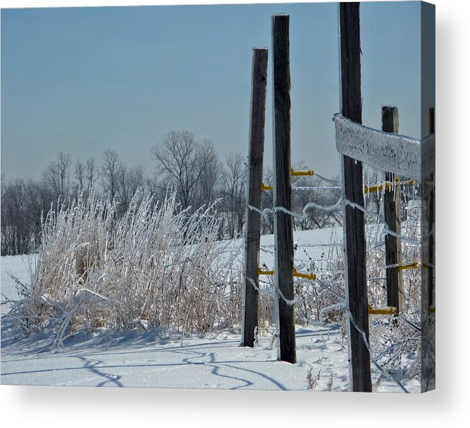 Weather Acrylic Print featuring the photograph Fence Posts In Ice by Martie DAndrea