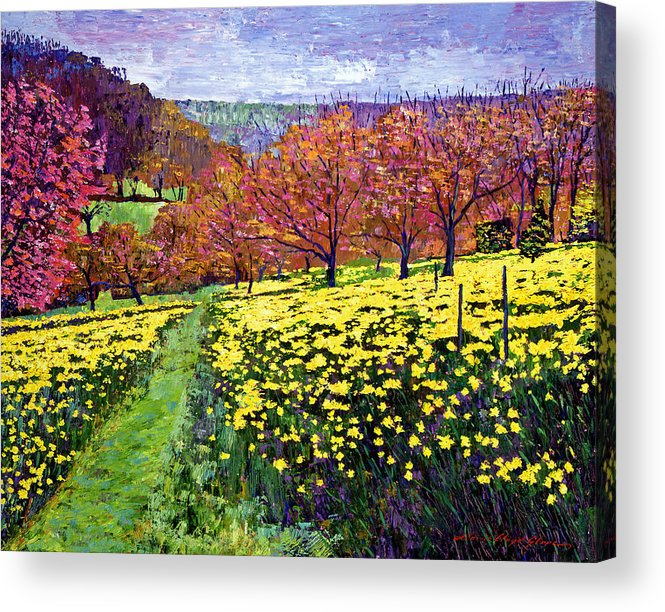 Impressionist Acrylic Print featuring the painting Fields Of Golden Daffodils by David Lloyd Glover
