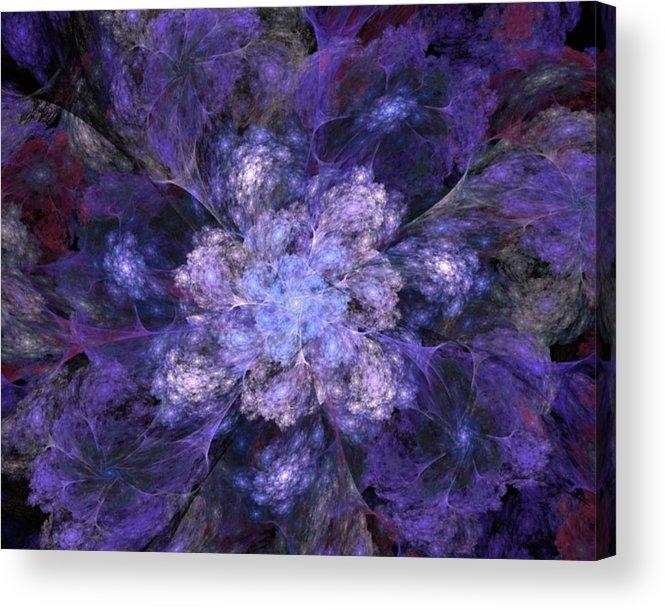Digital Painting Acrylic Print featuring the digital art Floral Fantasy 1 by David Lane