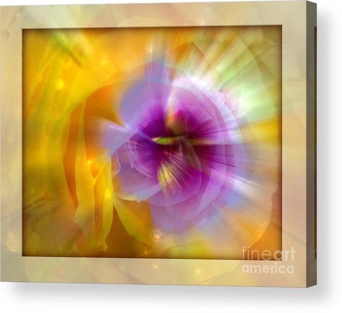 Flower Acrylic Print featuring the photograph Good Morning Sunshine by Chuck Brittenham