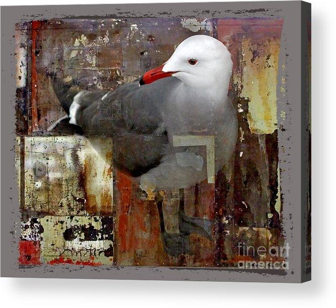 Bird Acrylic Print featuring the digital art Junkyard Gull by Chuck Brittenham