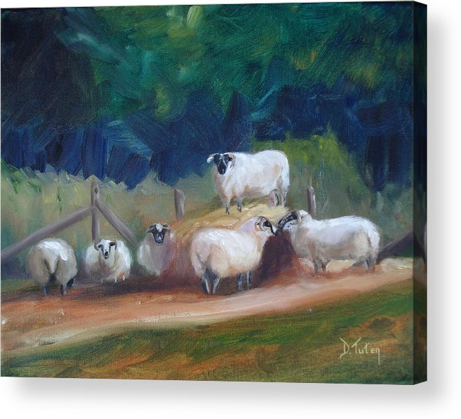 Sheep Acrylic Print featuring the painting King Of Green Hill Farm by Donna Tuten