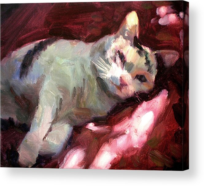 Cat Acrylic Print featuring the painting Luna In The Sun by Merle Keller