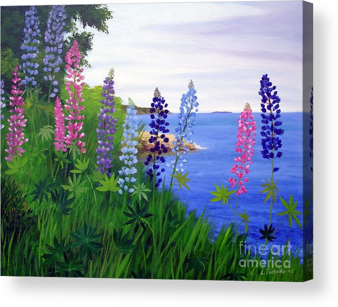 Wildflowers Acrylic Print featuring the painting Maine Bay Lupine Flowers by Laura Tasheiko