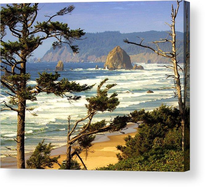 Ocean Acrylic Print featuring the photograph Oregon Coast 15 by Marty Koch