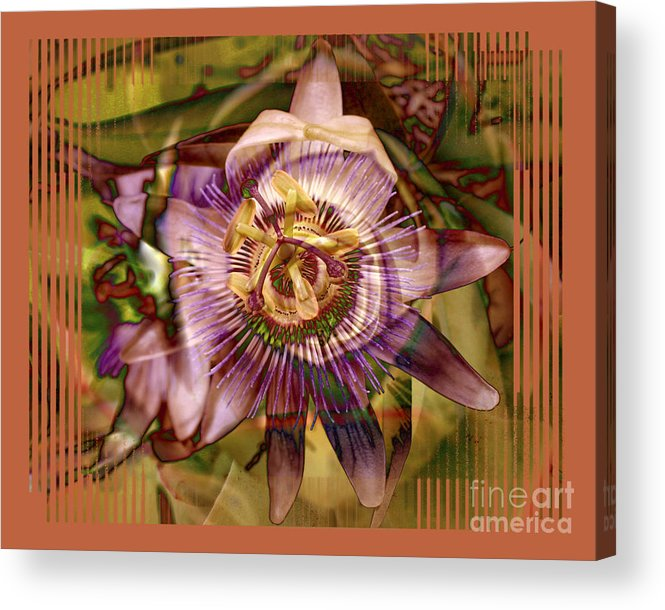 Flower Acrylic Print featuring the photograph Passion by Chuck Brittenham