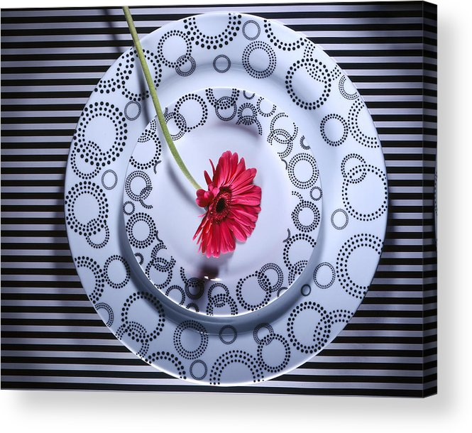 Plates Acrylic Print featuring the photograph Patterns by Jessica Wakefield