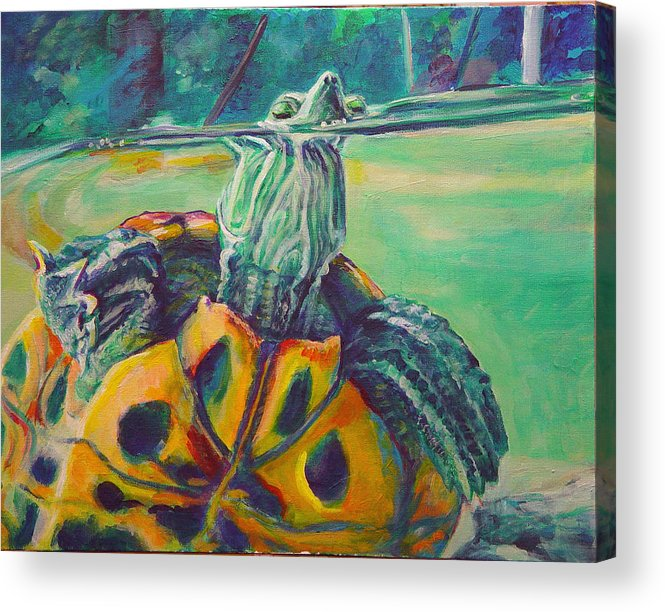 Turtle Acrylic Print featuring the painting Peeking by Gail Wartell