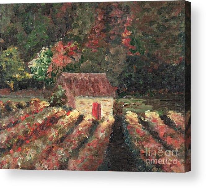 Landscape Acrylic Print featuring the painting Provence Vineyard by Nadine Rippelmeyer
