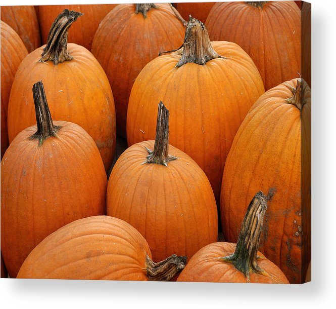Pumpkin Acrylic Print featuring the photograph Pumpkin Harvest by TnBackroadsPhotos