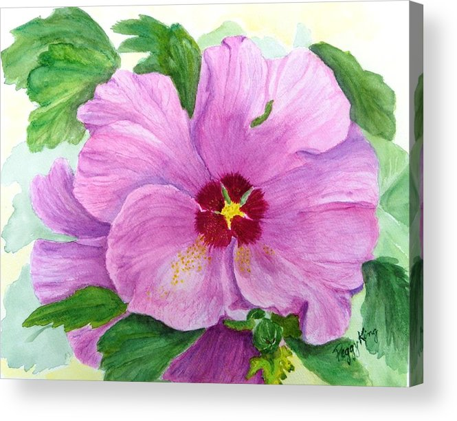 Watercolour Acrylic Print featuring the painting Rose Of Sharon by Peggy King
