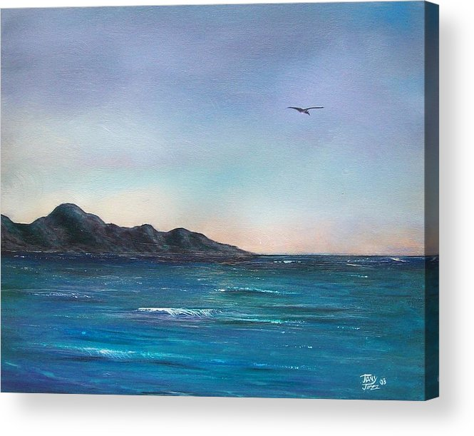 Seascapes. Seagull Acrylic Print featuring the painting Seagull Seascape by Tony Rodriguez
