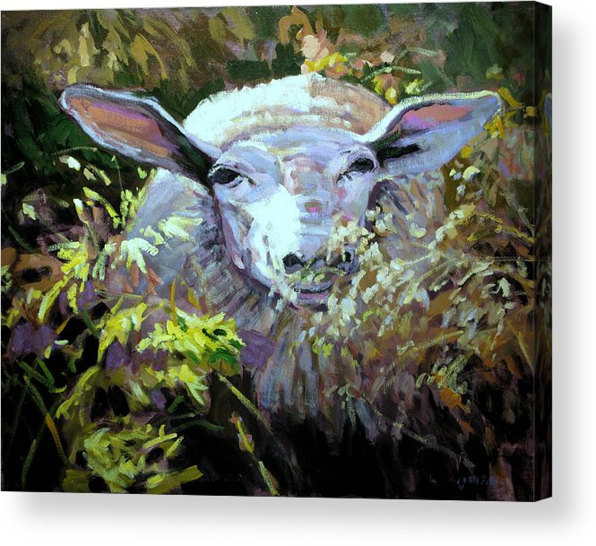 Animals Acrylic Print featuring the painting Sheepish by Brian Simons