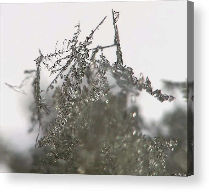 Macro Acrylic Print featuring the photograph Silver Snow by Lauren Radke
