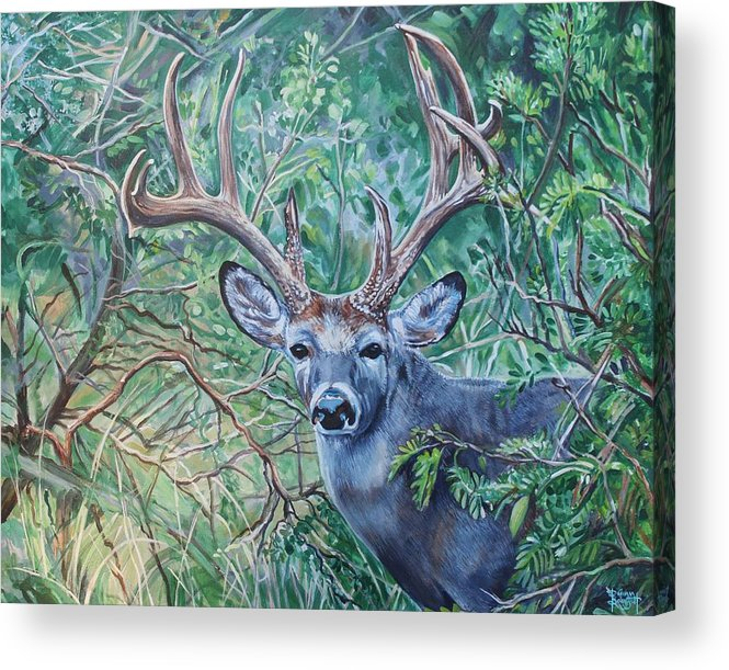 Deer Acrylic Print featuring the painting South Texas Deer In Thick Brush by Diann Baggett