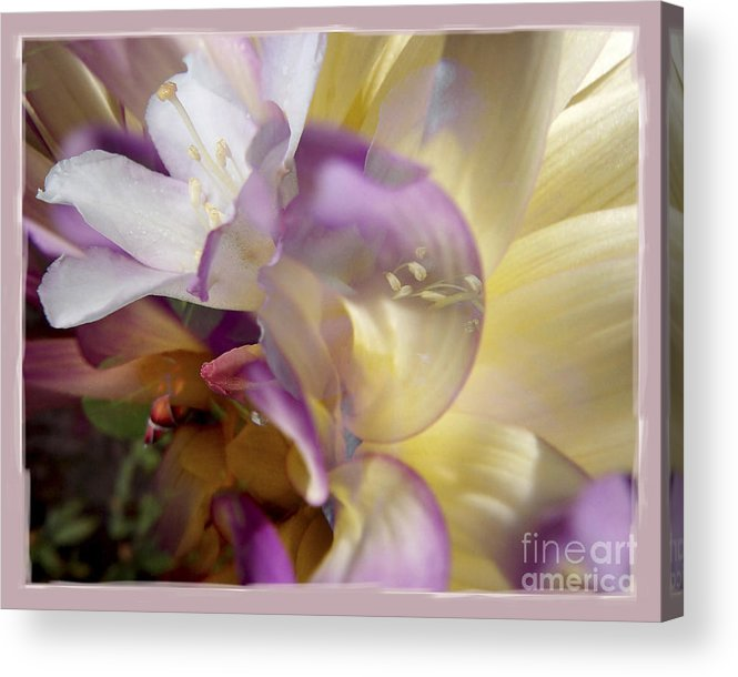 Flower Acrylic Print featuring the digital art Spring Overture by Chuck Brittenham