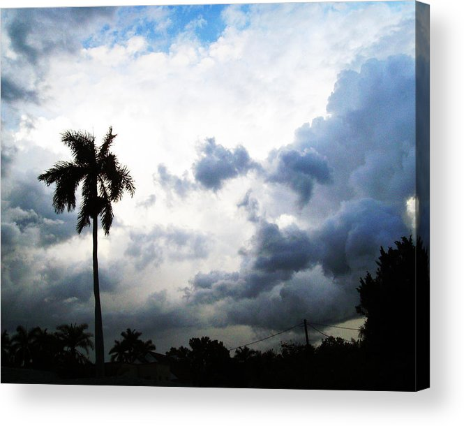 Florida Acrylic Print featuring the photograph Storm Brewing by Chris Andruskiewicz
