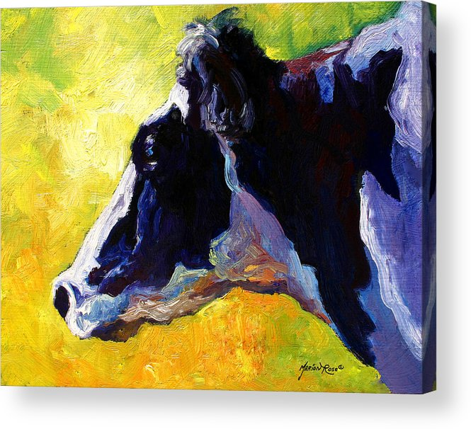 Western Acrylic Print featuring the painting Working Girl - Holstein Cow by Marion Rose