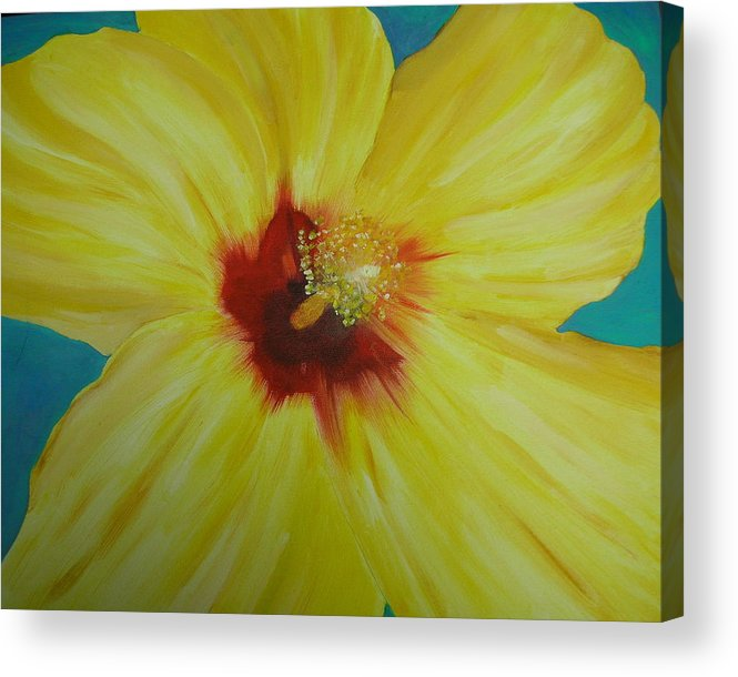 Flower Acrylic Print featuring the print Yellow Hibiscus by Melinda Etzold