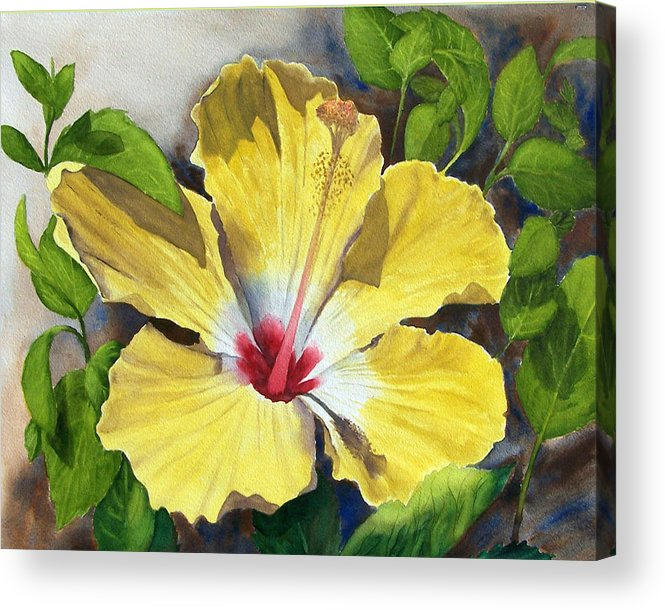Floral Acrylic Print featuring the painting Yellow Hibiscus by Robert Thomaston