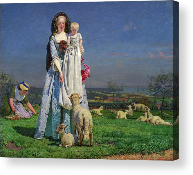Animal Acrylic Print featuring the painting Pretty Baa-lambs by Ford Madox Brown