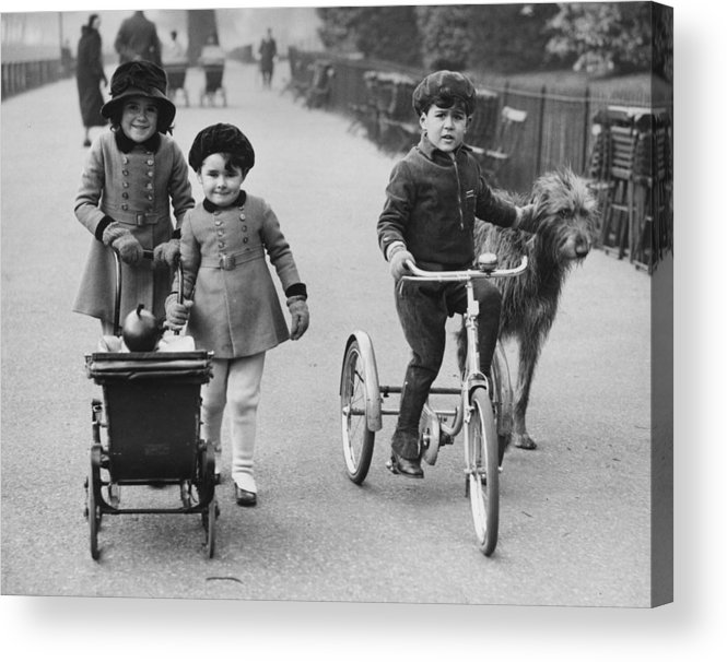 Pets Acrylic Print featuring the photograph Park Walk by Harry Todd