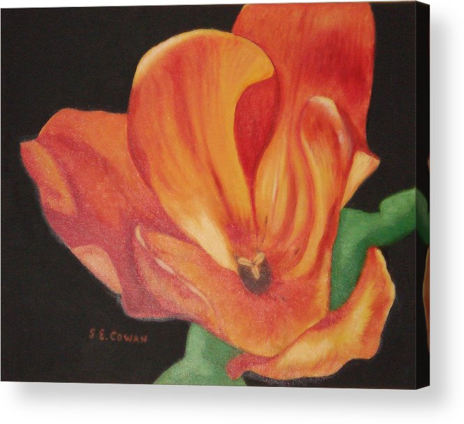 Tulip Acrylic Print featuring the painting Inside The Tulip by SueEllen Cowan