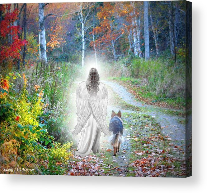 German Shepherd Acrylic Print featuring the photograph Come Walk With Me by Sue Long