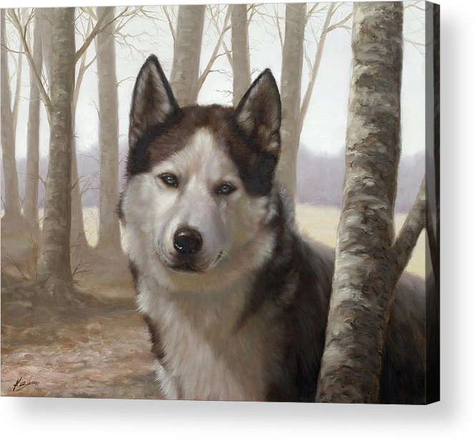 Husky Acrylic Print featuring the painting Husky In The Woods by John Silver
