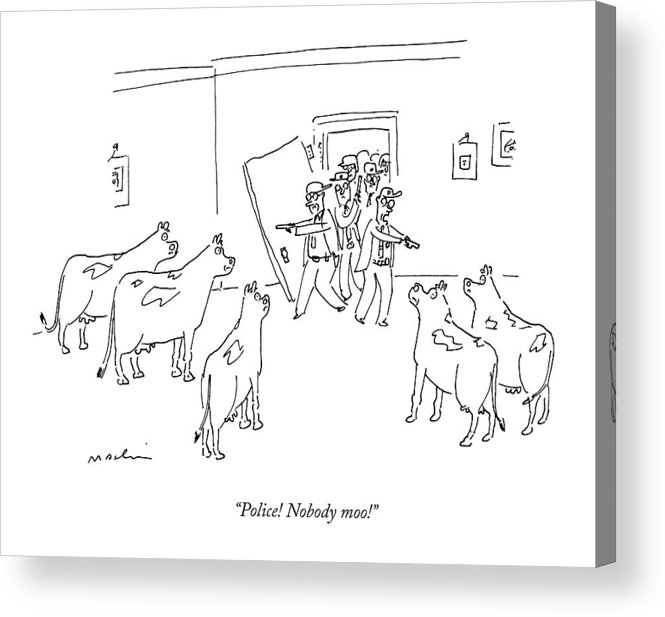 Cows Acrylic Print featuring the drawing Police Burst In With Guns To A Room Filled by Michael Maslin