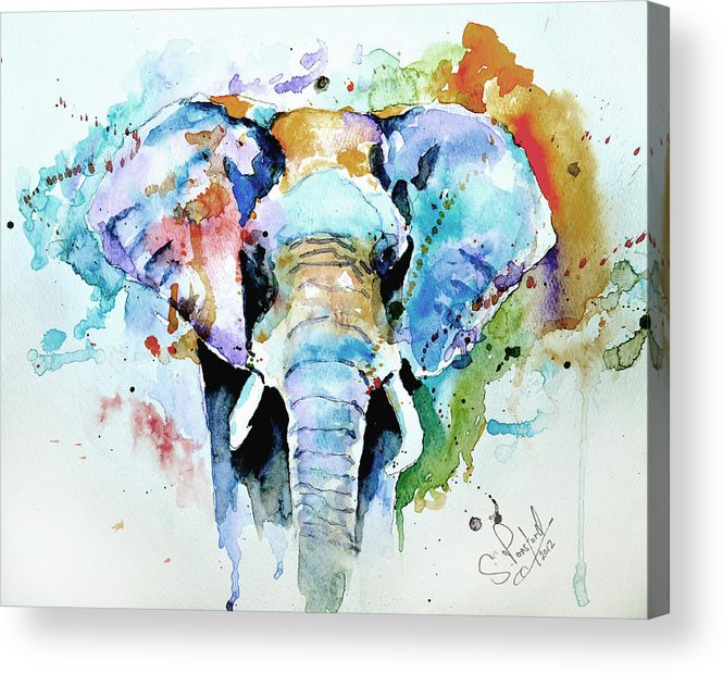 Elephant Acrylic Print featuring the painting Splash Of Colour by Steven Ponsford