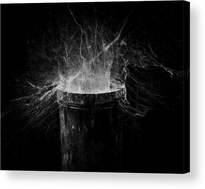 Cobweb Acrylic Print featuring the photograph Untitled Cobweb by Julian Cook