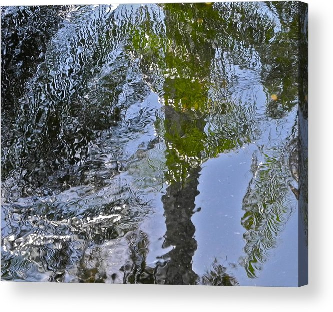 Palms Acrylic Print featuring the photograph Abstract Palm Reflections by Kirsten Giving