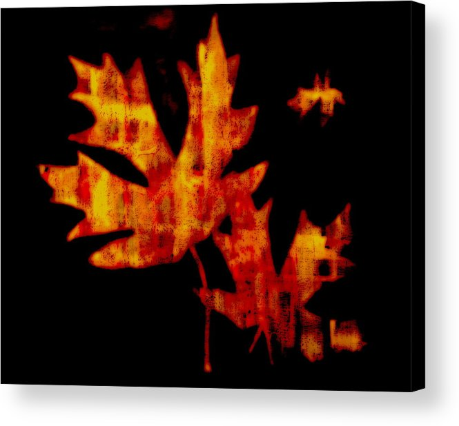 Leaf Acrylic Print featuring the painting Fallen Leaves by Kathy Sampson